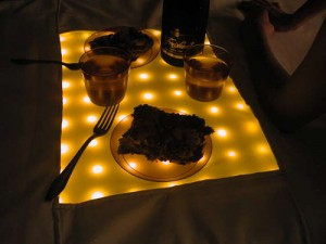 LED Picnic Blanket