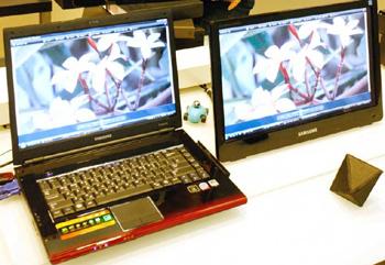 LapFit Monitors