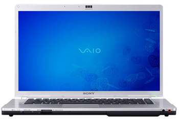 Sony VAIO FW Notebook