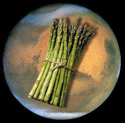 Asparagus on Mars