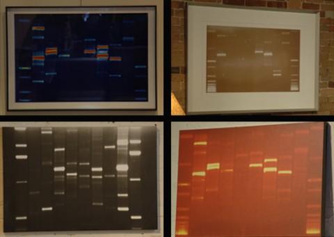 DNA11 Art