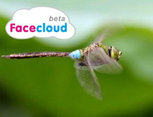 Facecloud logo