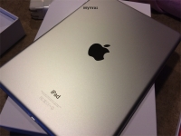iPad Air rear