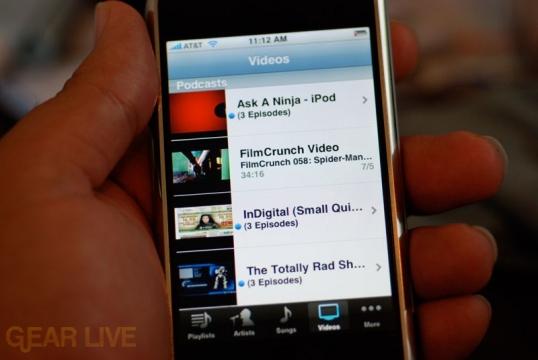 iPhone: iPod Video Interface