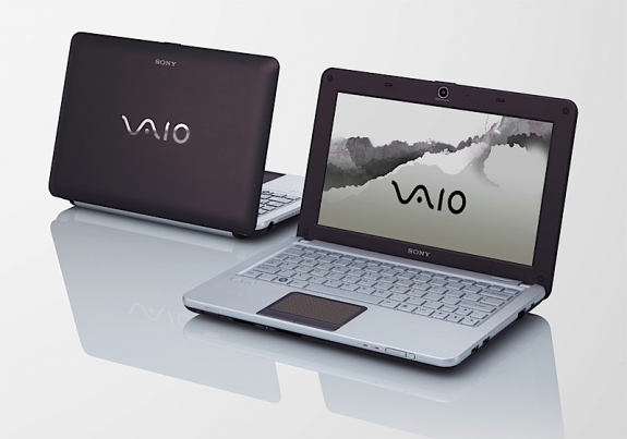 Sony Vaio W Brown