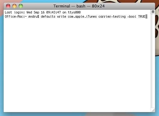 iPhone MMS Terminal