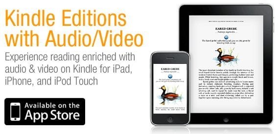 Kindle Editions iPad iPhone