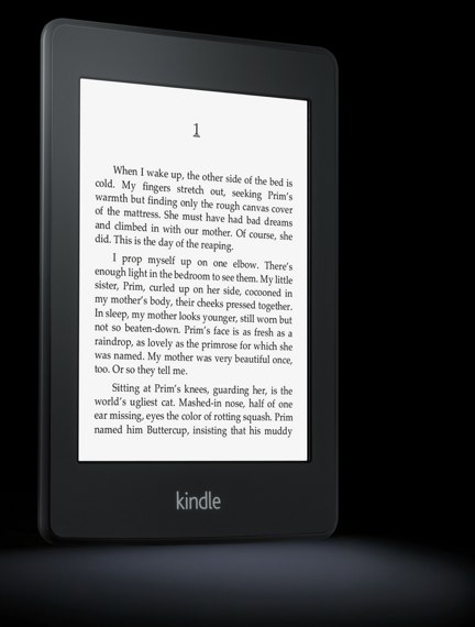 Amazon Kindle Paperwhite angled