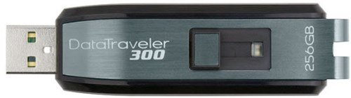 Kingston Datatraveler 300 256GB thumb drive