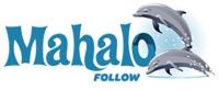 Mahalo Follow