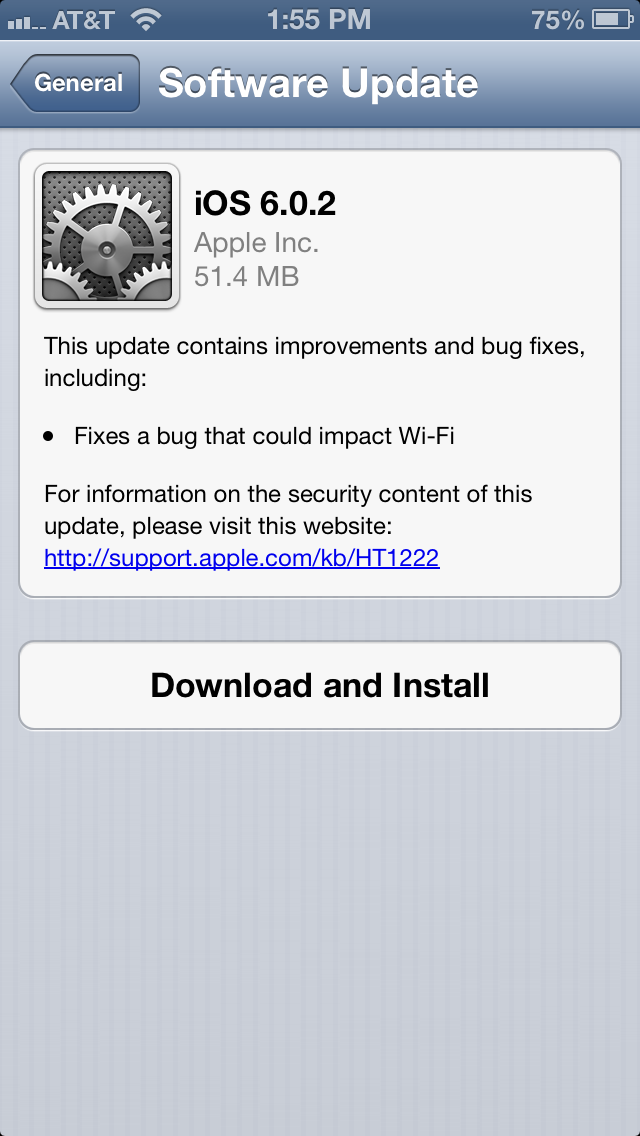 iOS 6.0.2