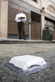 Streetline Sensor