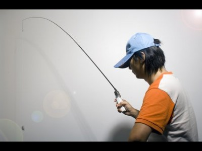 Wii Fishing Pole
