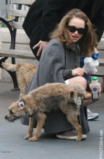 Natalie Portman, dog