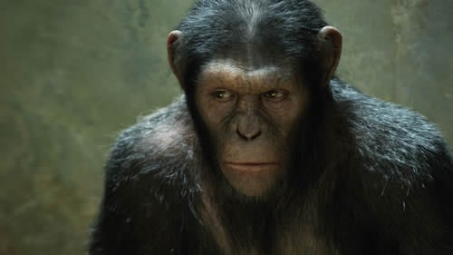 Andy Serkis in Rise of Planet of the Apes