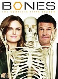 Bones Season 5 DVD