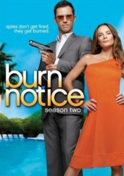 Burn Notice Season 2 DVD