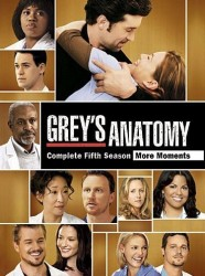 Grey's Anatomy Season 5 DVD