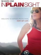 In Plain Sight Season 1 DVD